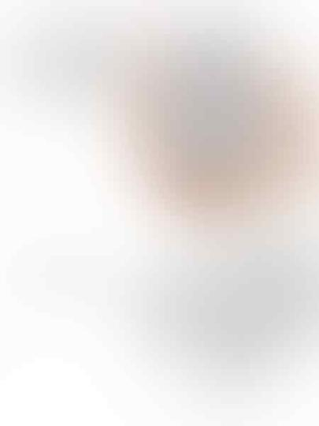 DISTRIBUTOR POWERBANK ORIGINAL XIAOMI 10.400 MAH GARANSI & SILIKON POWER BANK XIAO MI