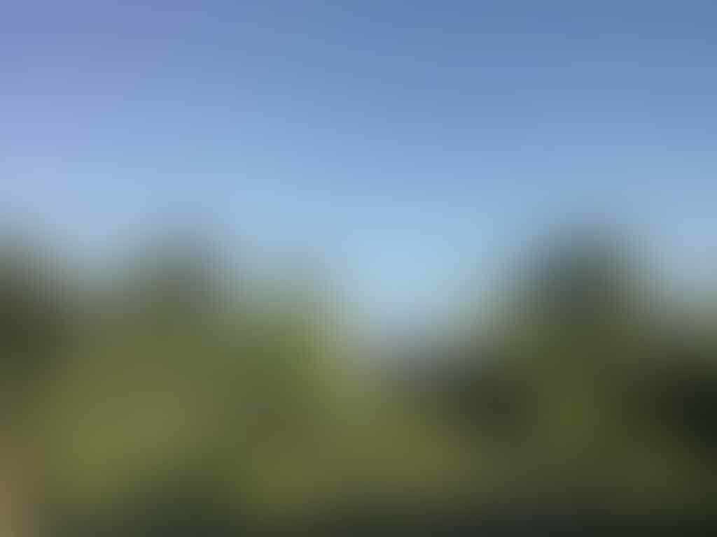 DIJUAL RUMAH MURAH DAERAH PURBALINGGA MAJAPURA 425JT (NEGO)