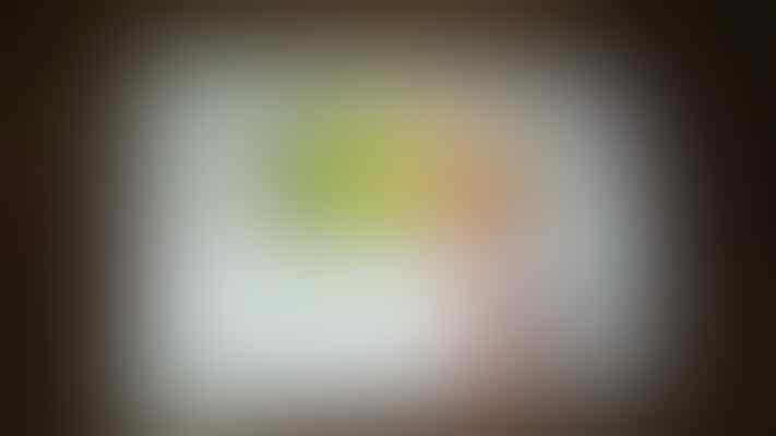 J> lg g2 mini white fullset bergaransi