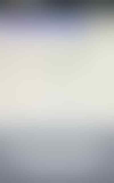 Aluminum Gorilla Glass Waterproof Case Cover For Sony Xperia Z3 LOVE MEI LUNATIK