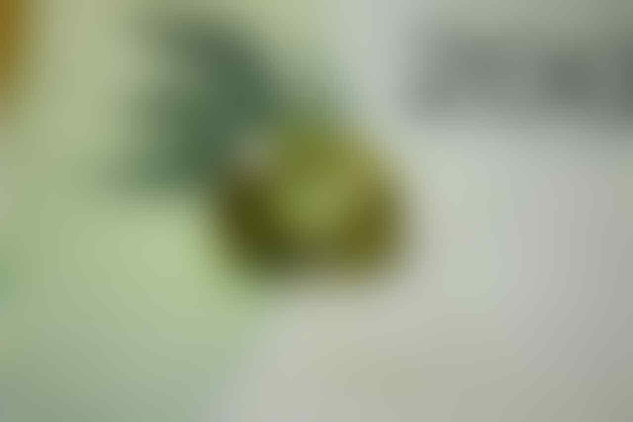 Loose Stone, batu + ring, dll yang paling utama MURMER... insyaAllah update