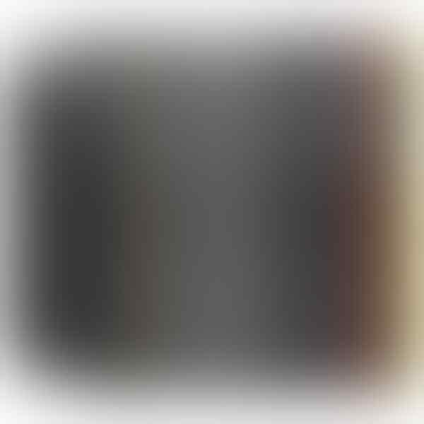 AKSESORIS IPHONE 6/6+/PLUS SPIGEN NEO HYBRID/SLIM ARMOR/TOUGH ARMOR TEMPERED GLASS