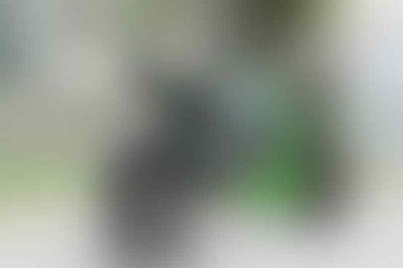 WTS : BEST MODIF KAWASAKI ZX 636 GREEN 2014 ATPM