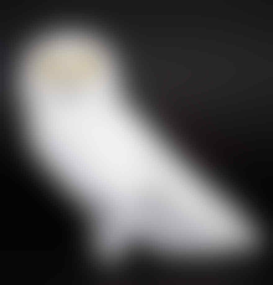 [KEREN] Burung-Burung Ini Terbuat dari Lego