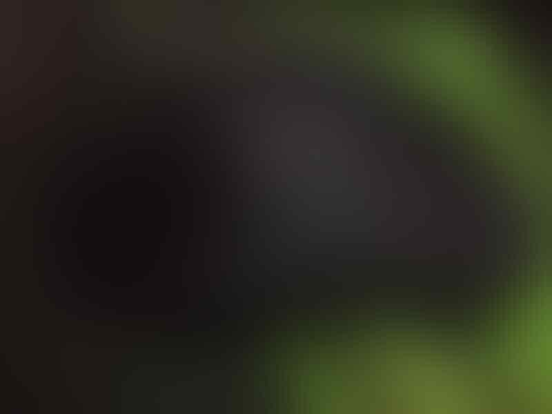 WTS Razer Deathadder 2013 -- 2nd & Sensor Standart ( Murah meriah Fix Ga Nyesel )