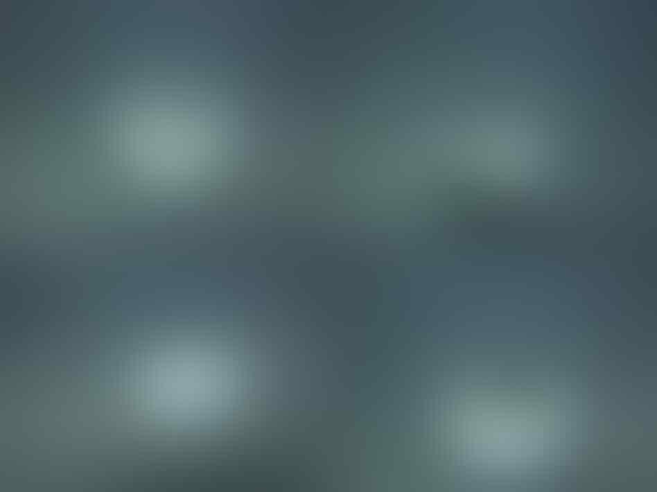 Wokwow (Lelang Black Opal,Rafflesia DLL) END 23/01/2015 jam 22.00 malam