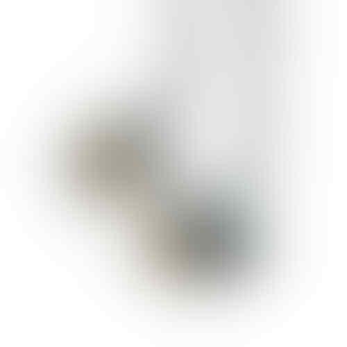 [ZENAUDIO] READY Shure SE215,SE535LTD,SE112,SE315,SE535,SE846,SE425,DLL BNIB