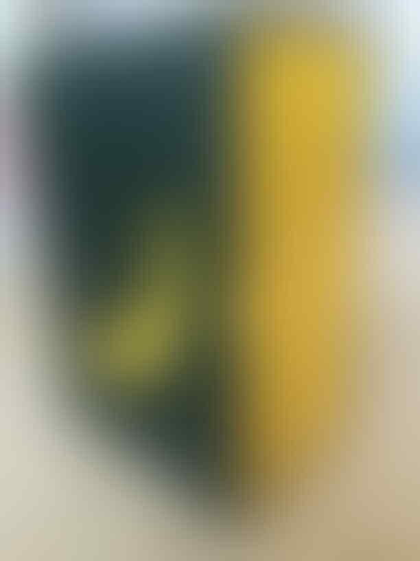 Jual/Beli/Barter HOTTOYS,ENTERBAY lainnya - Part 1