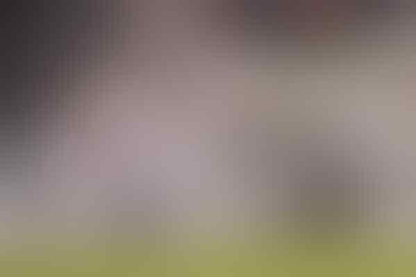 (★★★)Welcome To @IndoJuveDOC-@JuveKaskus Home |Juventus FC 2015-2016|#weareindojuve