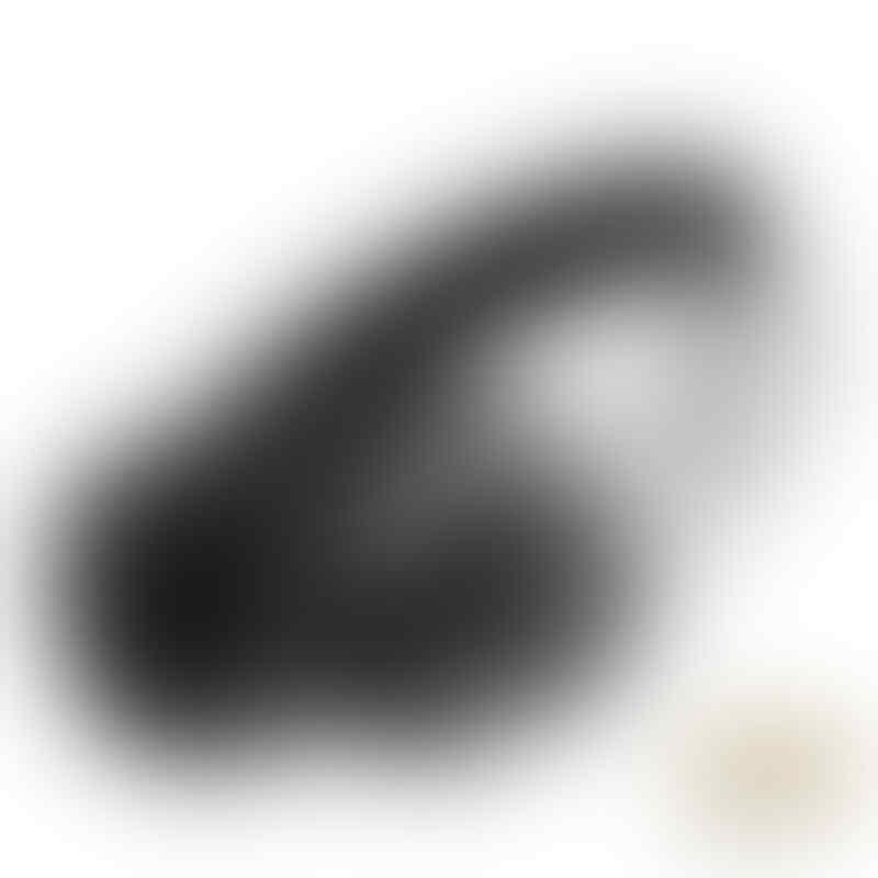 [stary] Brainwavz Headphone,Earphone,Amplifier,Case,Leather & Velour,dll BNB