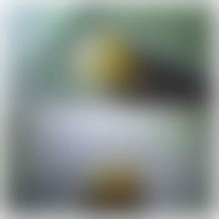 LELANG BATU PREMIUM RAFLESIA, FO, BULU MACAN BUKAN BACAN CLOSED 21-09-2015, 21.01