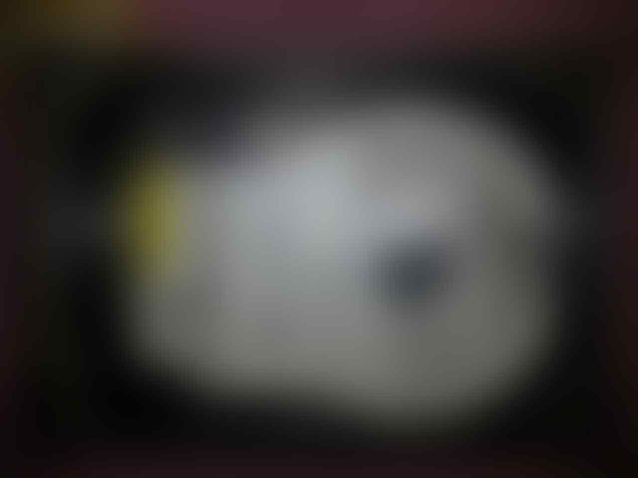 HDD 80GB, 160GB, 250GB dan 500GB untuk PC Desktop