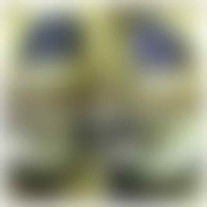 LELANG SEMANGAT BARU,REJEKI BARU(LUUT,BACAN,DLL)CLOSE 6/10 22:00 AUTOCLOSE
