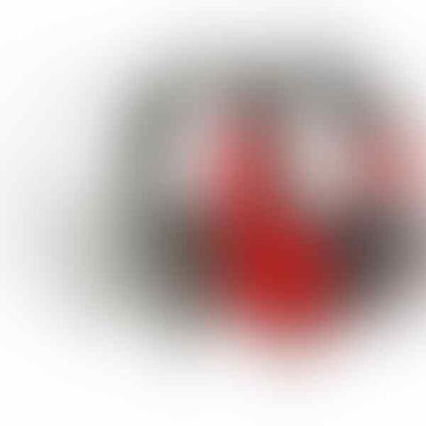 [stary] Audio Technica ATH Earphone (IEM,Earbud),Headphone (Profesional,HiFi,DJ)