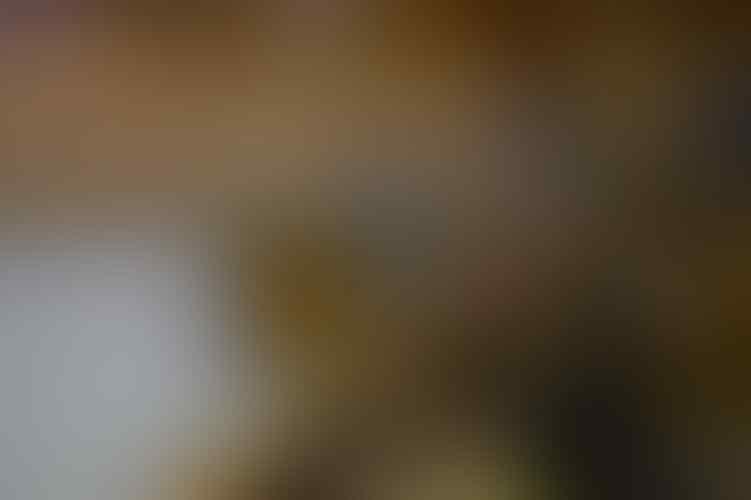 Kelakuan DPR Sepanjang 2015 Yang Bakal Bikin Agan Mulas