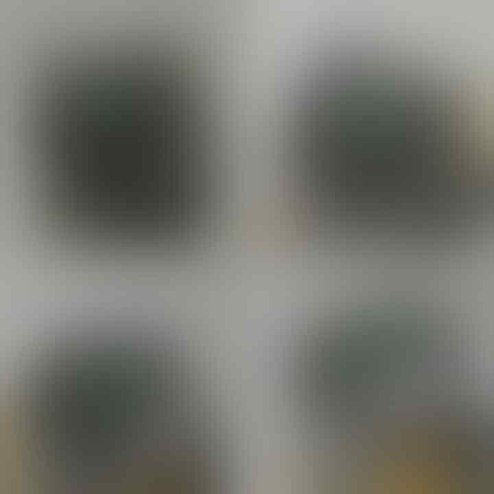 LELANG BATU PREMIUM FIRE OPAL (FO), BACAN, DLL CLOSED SABTU 27-02-2016 JAM 21.00