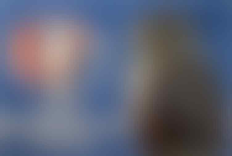 Pluit-Pluit Sakti berdengung diantara penonton UEFA EURO 2016 gan...