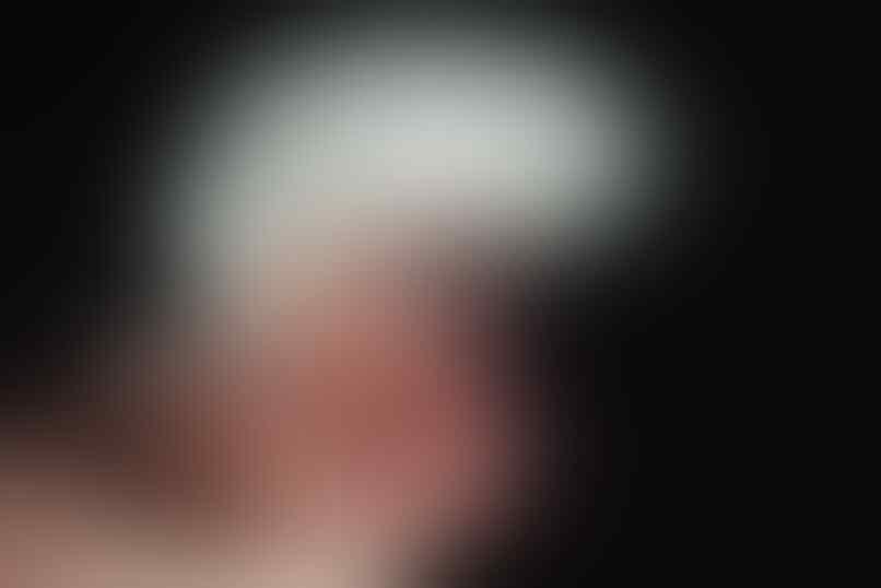 ≈ Dimari ada photo close up kelelawar loh, imejing dah ≈
