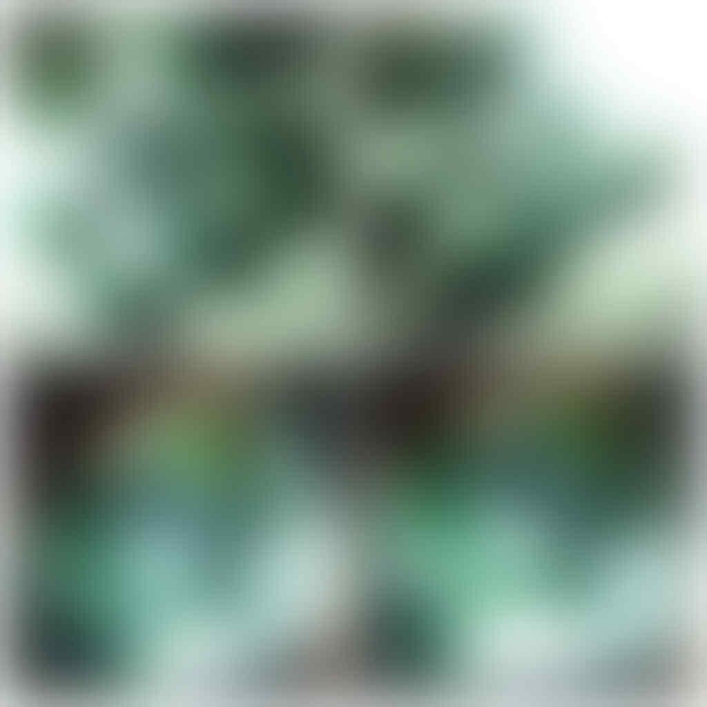 Lelang Aneka Batu Bacan Doko, Relaxa, Bacok, Gulau Dll END 14-07-2016 JAM 20.00