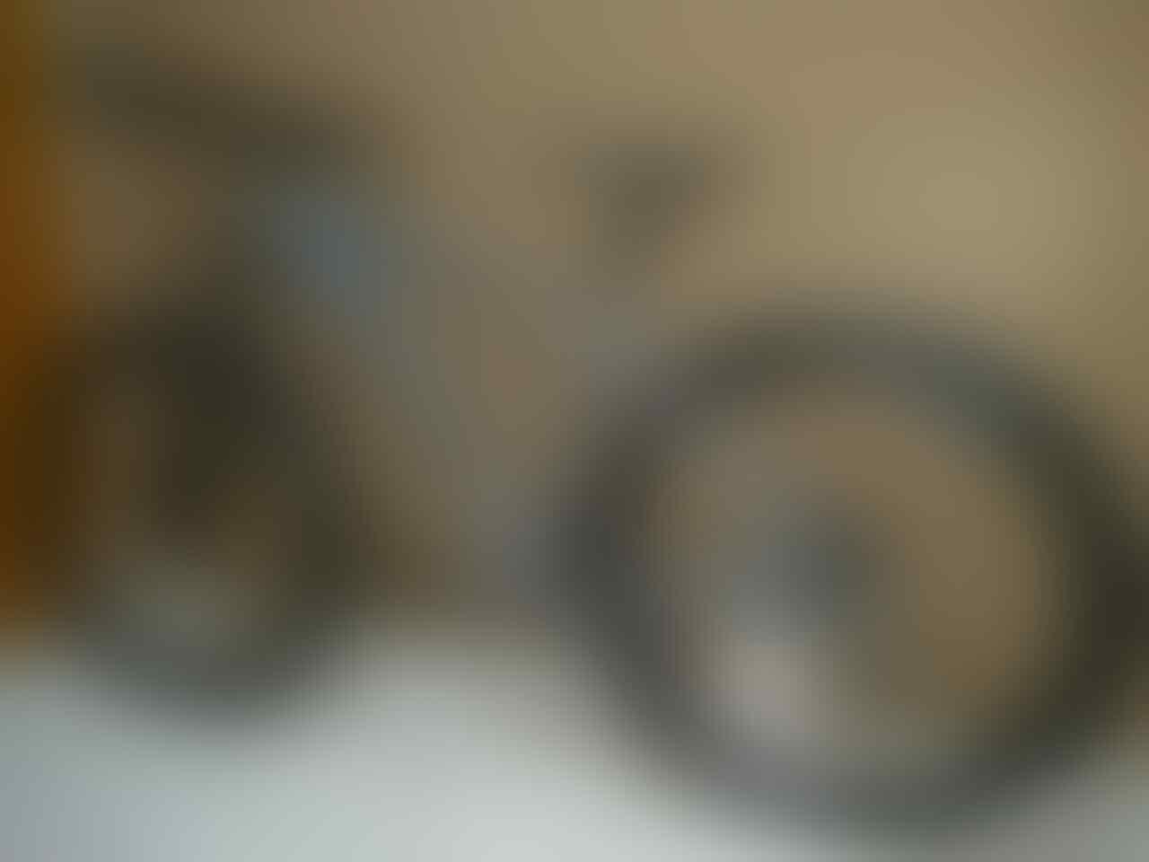 Polygon Xtrada Bike Park