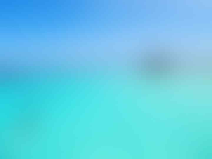 Kepulauan Derawan Punya Pesona yang Begitu Menggoda, Yakin Ga Pengen kesana?