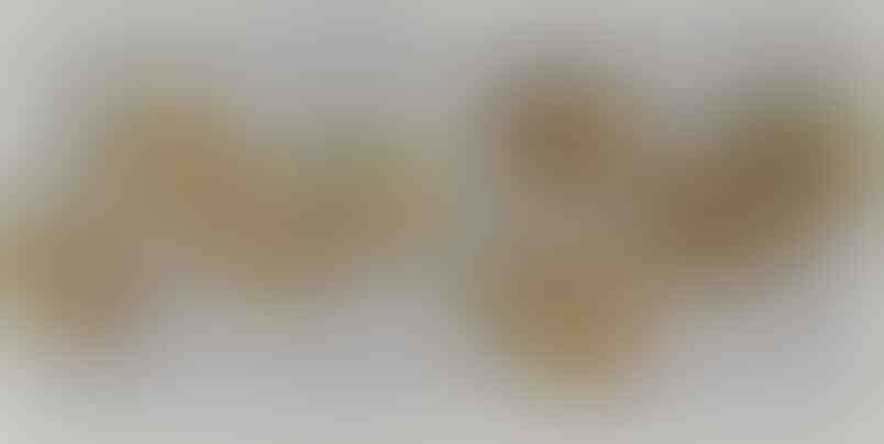 LELANG YULIESALWA #36 SINGKAT BOSKUU CLSD 26 OCT