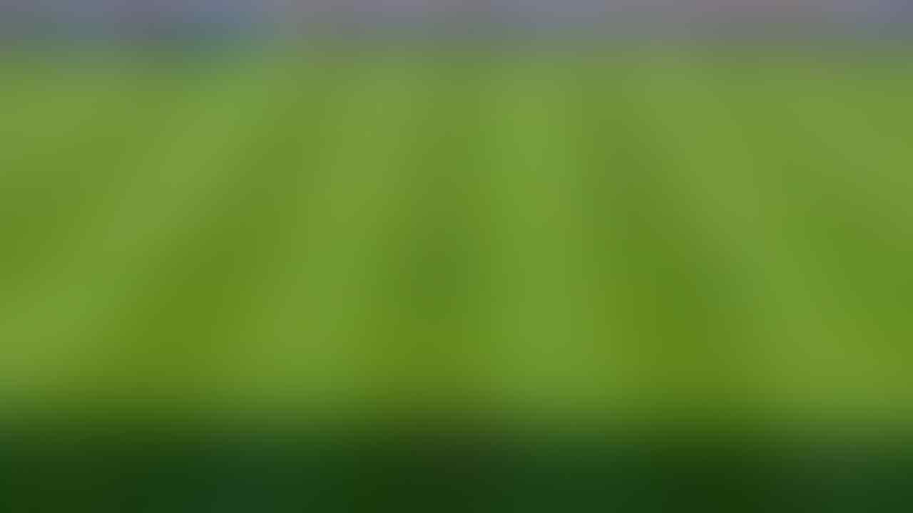 [OT] Pro Evolution Soccer 2017