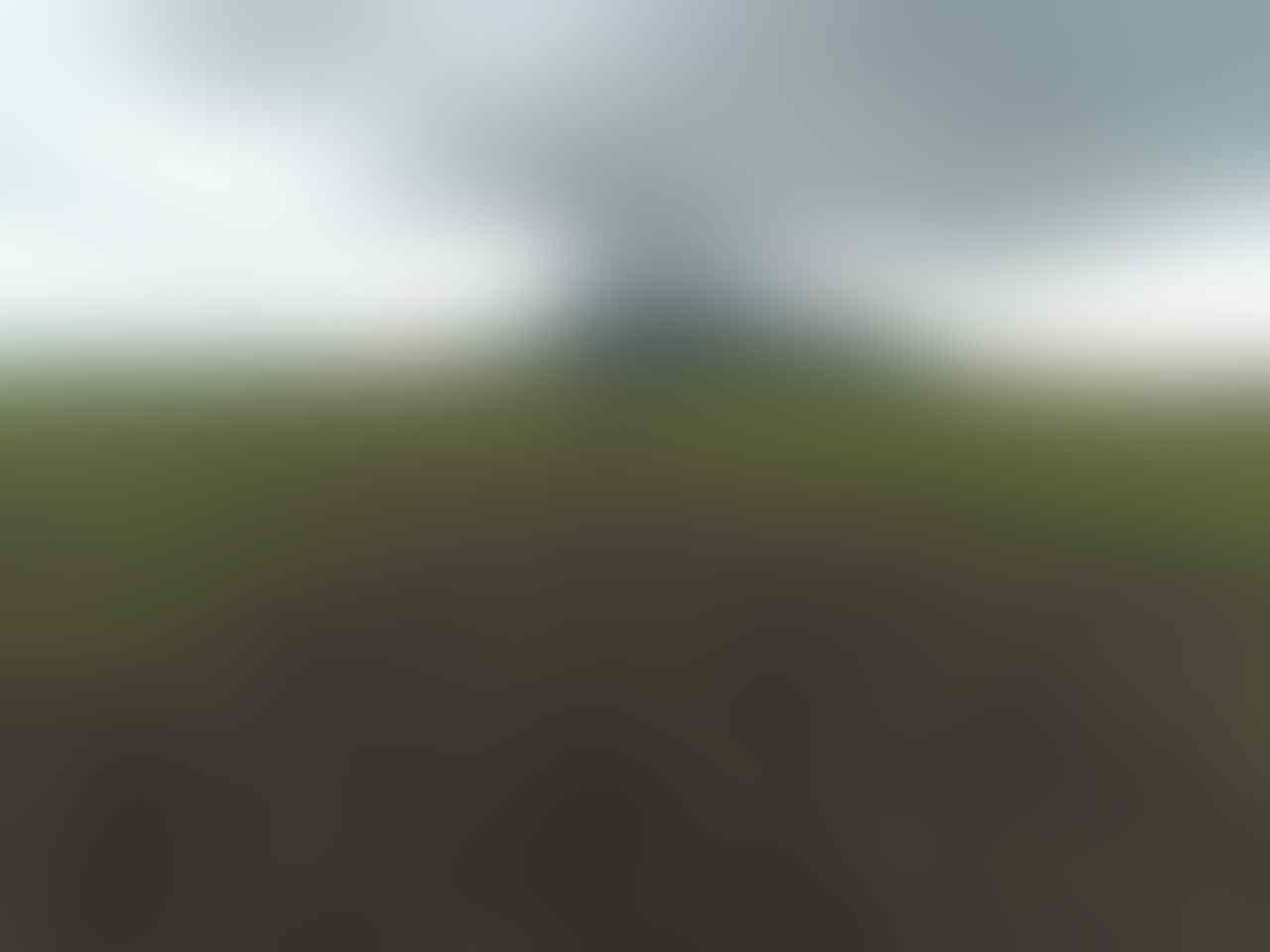 5 Spot Keren Di Taman Nasional Baluran