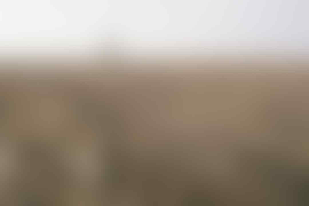 Warung Ngumpul Penggemar Kamera Analog - Part 4