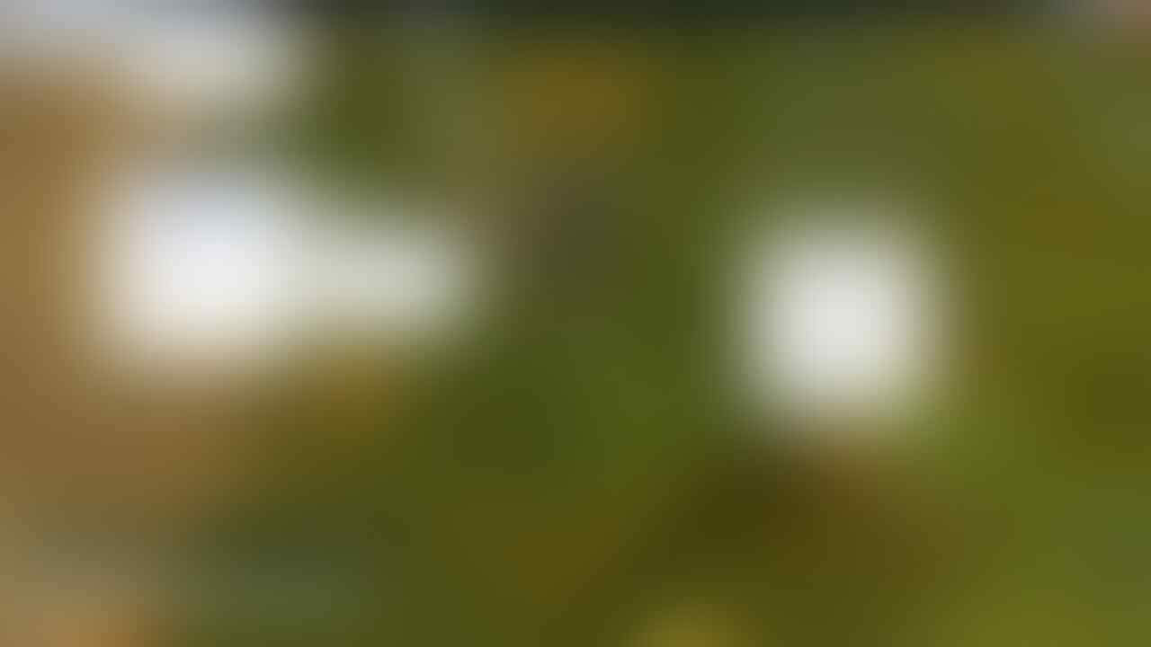Drama Ragnarok Online 250/90 2nd Transcendent [Private Server]