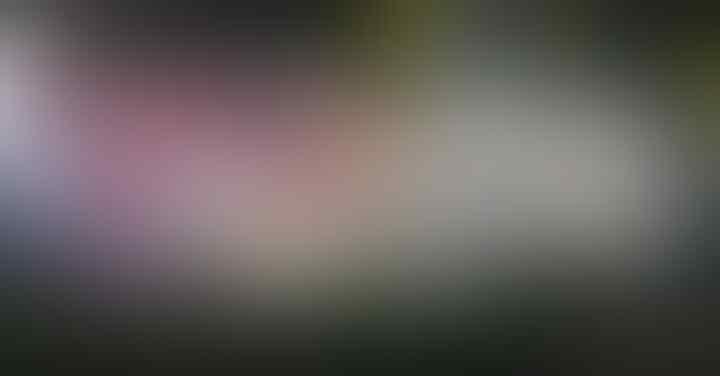 KPK: Penyidik Bisa Tetapkan Kembali Novanto sebagai Tersangka