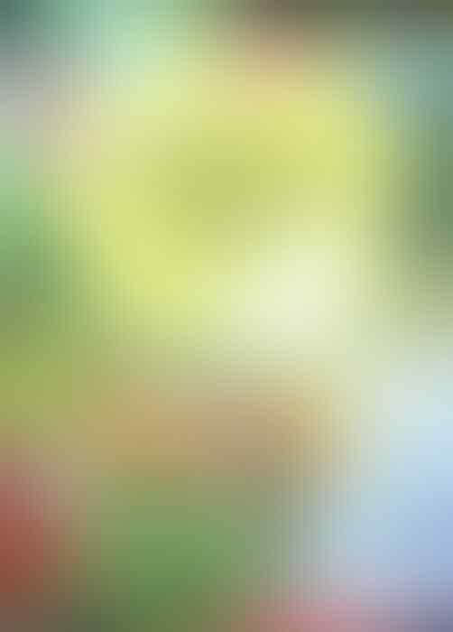 Beredar Poster Pendakwah Imam Syuhada Sebut Natal Sumber Bencana Alam
