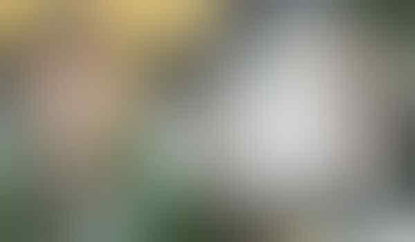 Kematian Tragis Saat Menelepon Sambil Charger Ponsel(Hati-Hati Gan)