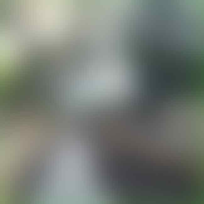 Anies Pamerkan Bersihnya Kali Tegal Amba Duren usai Gerebek Sampah