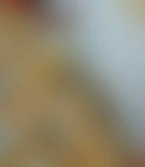 Foto Seksi di Atas Ranjang Bareng Pacar, Bagian 'Anunya' Nikita Willy Bikin Salfok