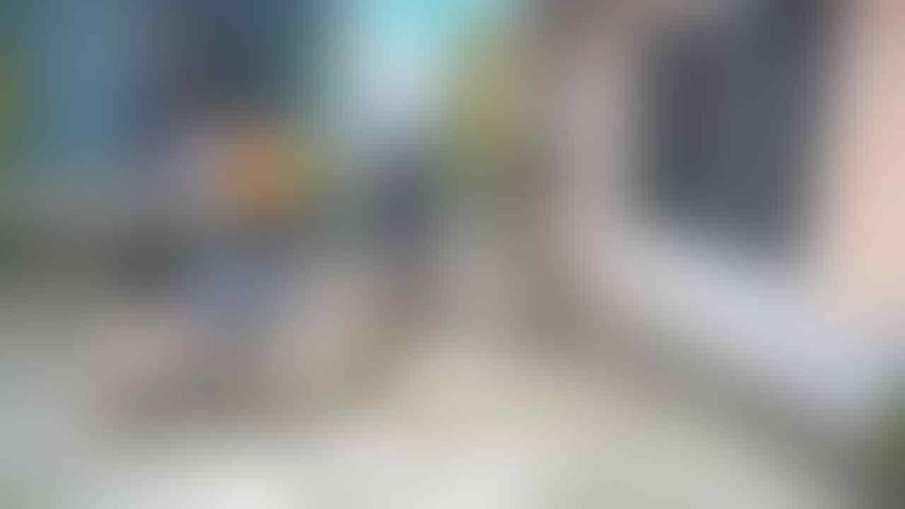 Kisah Rambo dan Syahrini, Ular Piton Raksasa Kawan Bocah Kampung