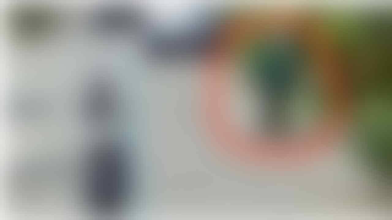 Iseng Cari Alamat, Warganet Temukan Sosok Tak Terduga di Google Street View
