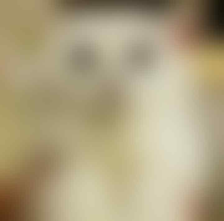 Saking Lucunya, 7 Selebgram Kucing Ini Bisa Bikin Hati Kita Meleleh