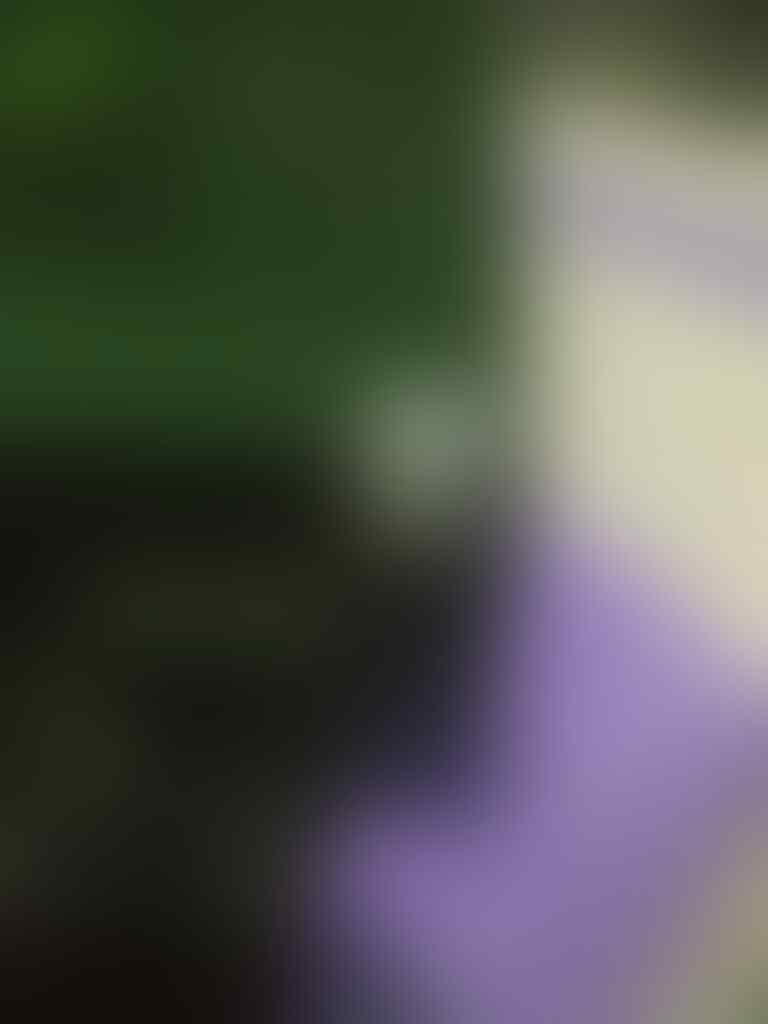 [Discuss + Share] Seputar PSU Seasonic !