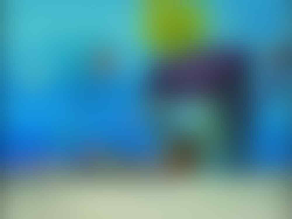 Ini Dia Rahasia Spongebob Squarepants yang Ternyata Sudah Terbingkar Gan