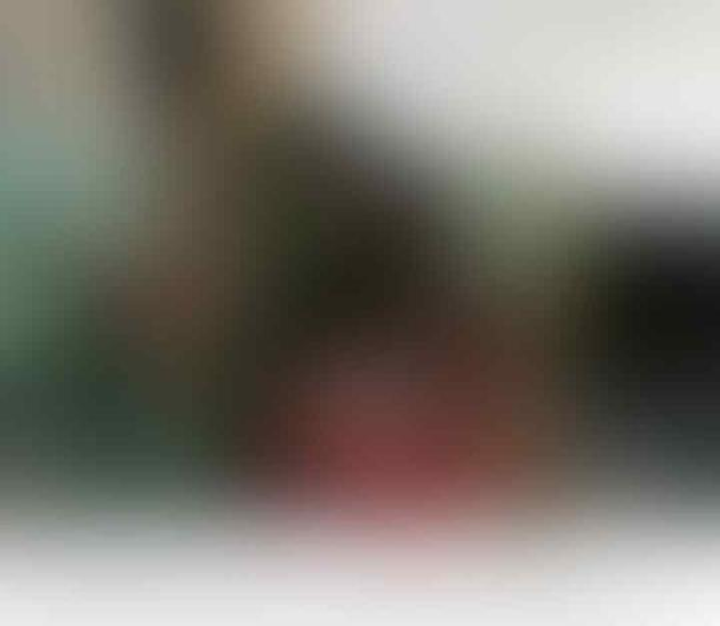 Macan Tutul yang Ngumpet di Kolong Rumah Berusia 1,5 Tahun