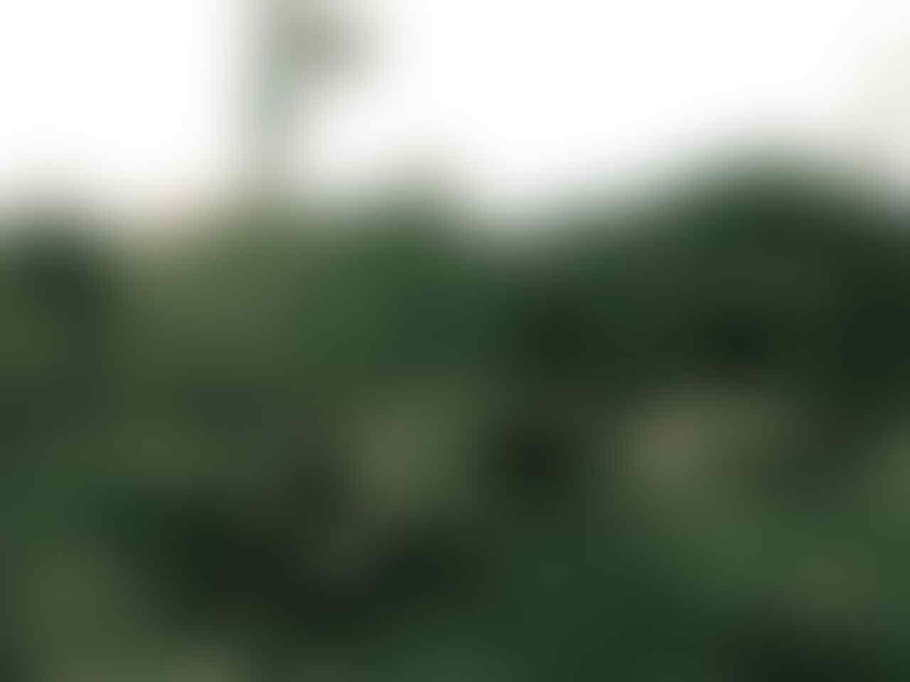 KISAH Menembus Waktu ( Bertemu Diri Sendiri di Segoro Wedi ) Puncak Sindoro