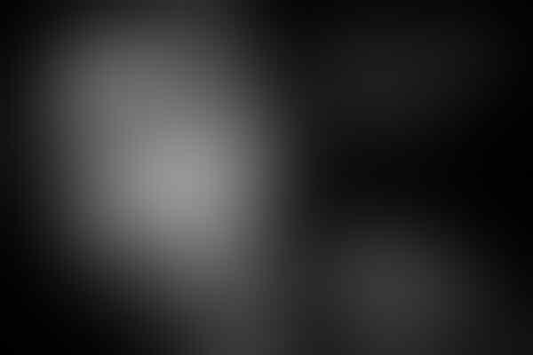 5 Lagu Lawas Iwan Fals Yang Masih Relevan Dengan Keadaan Sekarang