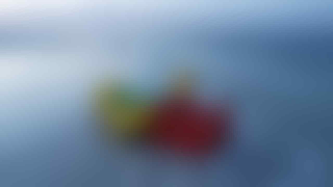 Bikin Bingung Penemunya, 7 Benda Aneh Ini Pernah Terdampar di Pantai!
