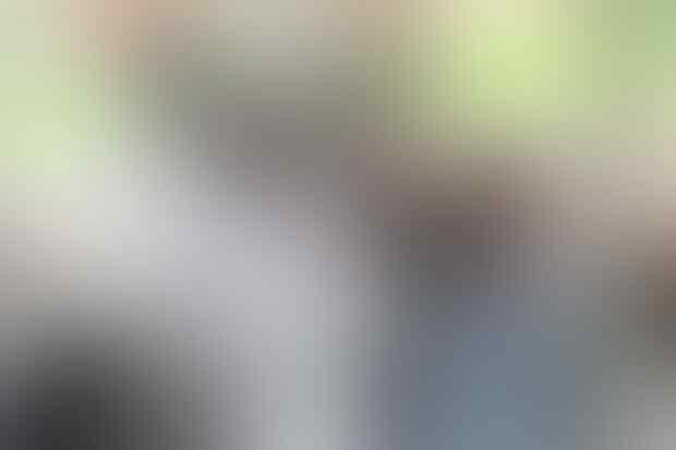 GAK WARAS, Kambing Hamil di India Mati Karena Diperkosa 8 Orang