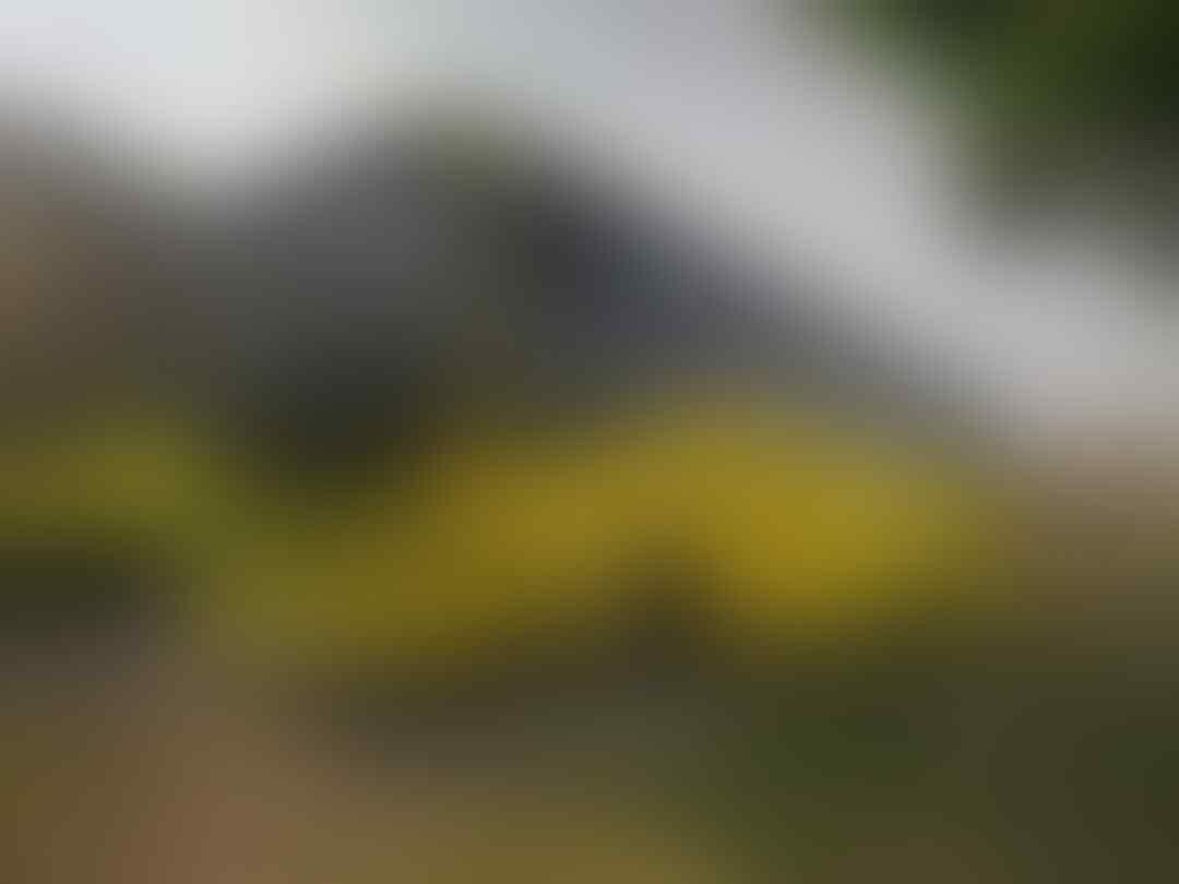 [INVITATION] Bismania Kaskus (BIMAKUS) Menuju Kunjungan Pabrik Karoseri Laksana
