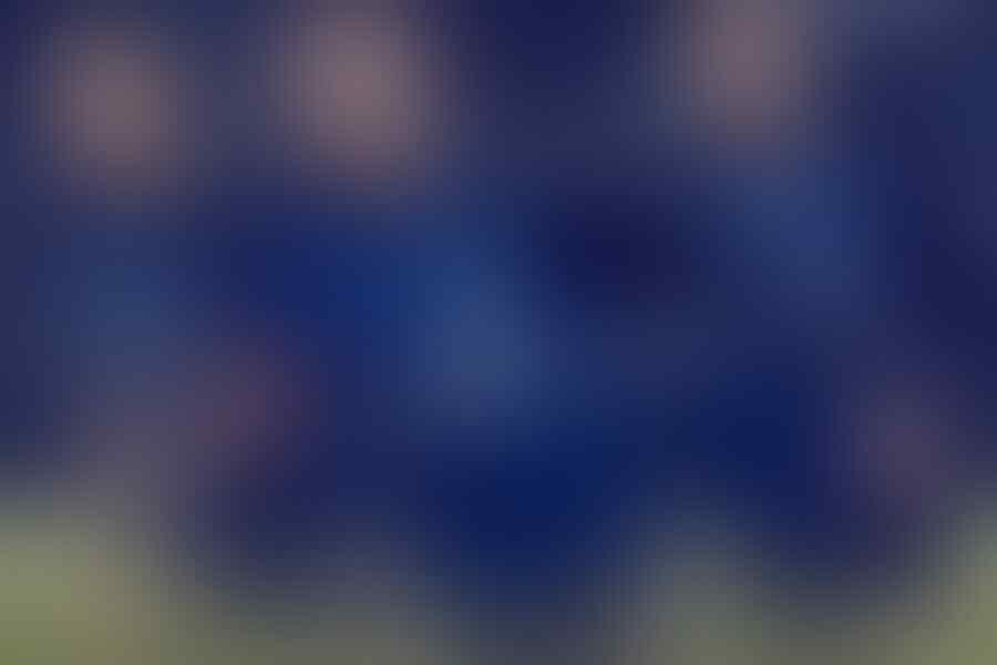 | ★ F.C INTERNAZIONALE MILANO 1908 ★ | Sezione 2018-2019 | #AusilioIsFFPGOAT - Part 1