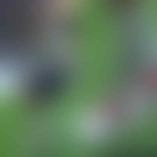 Woho! Adidas Predator Precision Beckham dan Zidane Diproduksi Lagi Gan
