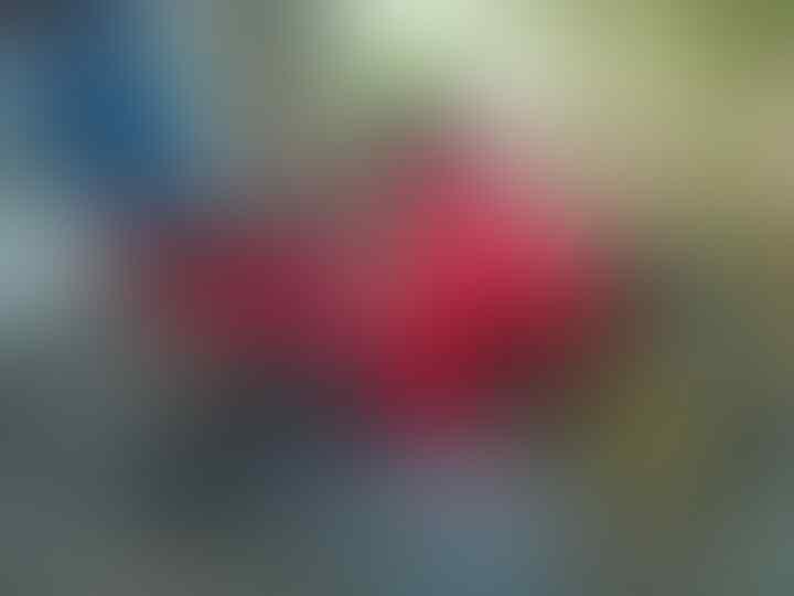 [SATRIA120ERS] Suzuki Satria 120 Riders... - Part 6