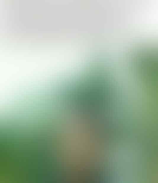 Bawaslu: Anies Baswedan Tidak Langgar Pidana Pemilu